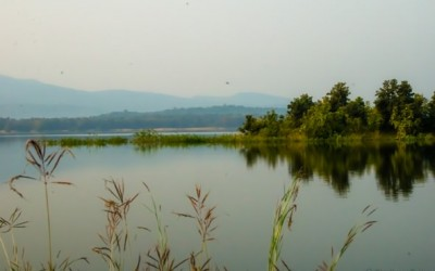 The Dense Forests of Satpura – Prologue
