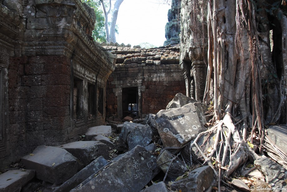 Backpacking across South East Asia -Ta Prohm, Angkor 4