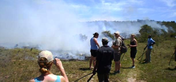 Choosing a family Safari in Africa 3
