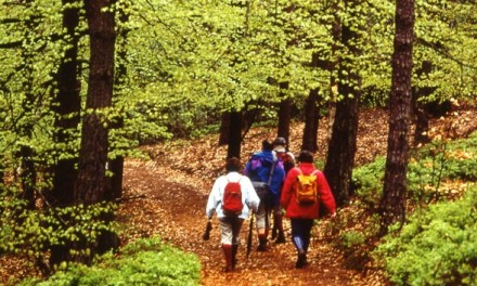 Trekking and Walking Holidays In Some Key European Locations