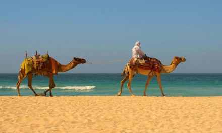 Enchantment and Intrigue in India & Morocco