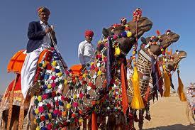 The Colors of Jaisalmer Desert Festival