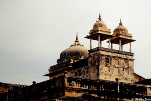 Colorful Rajasthan – The Forts of Jaipur