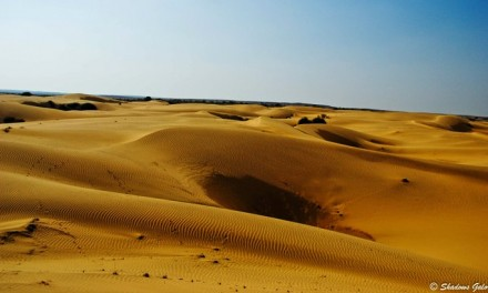 Colorful Rajasthan: An Evening at Thar
