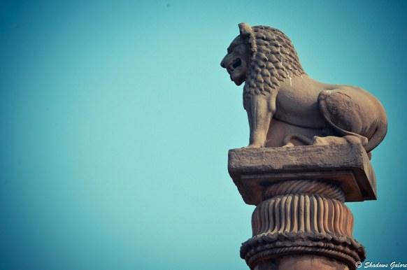Lion Capital vaishali