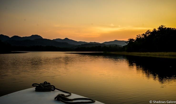 Denwa River Safari-24