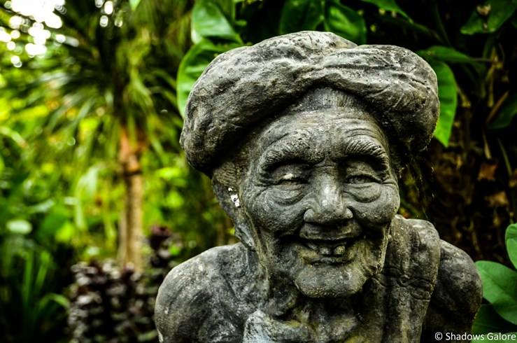 Balinese Coffee Plantation-10