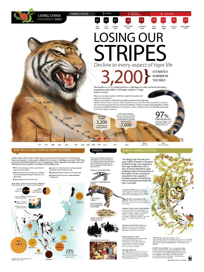 Losing Our Stripes - WWF