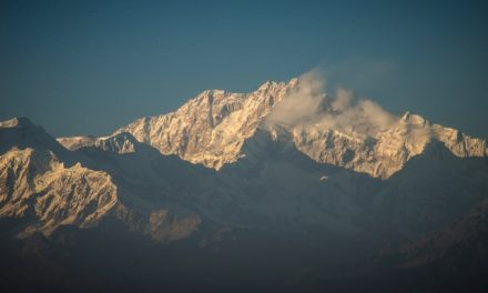Darjeeling Unlimited – First Impressions