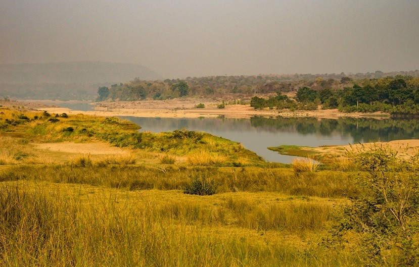 A Diary From The Jungles Of Panna 22