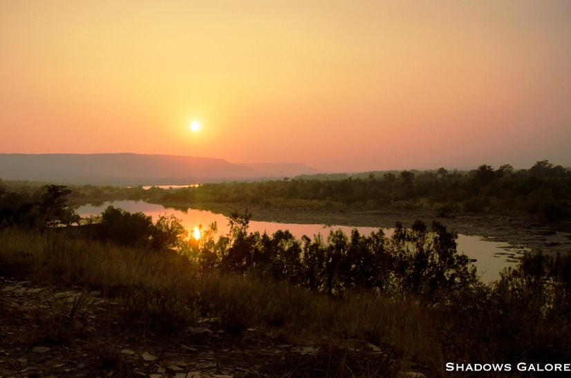 A Diary From The Jungles Of Panna 10