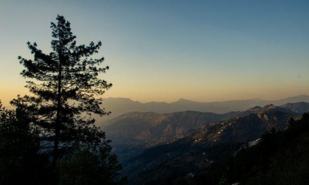 Himachal Diaries – The Beginning At Fagu