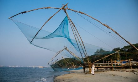 Exploring Fort Kochi In A Day