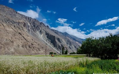 Turtuk – The Crown Jewel Of Baltistan